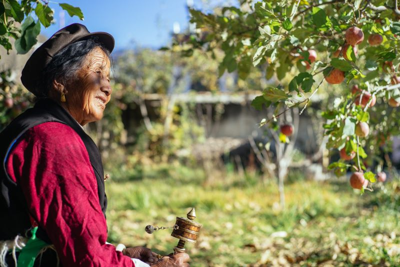 A farmer in Sichuans Xiangcheng county tends to her apple tree everyday. Alibaba recently empowered the regions farmers to develop their own Xiangcheng Apples brand _02222019